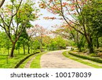 road in the park - stock photo