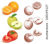 orange  apple  tomato. vector... | Shutterstock . vector #100195127