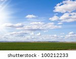 green grass and blue sky with... | Shutterstock . vector #100212233