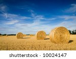 Straw Bales On Farmland With...