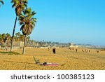 Постер, плакат: View of Venice Beach