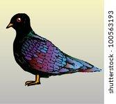 a vector illustration of indian ... | Shutterstock .eps vector #100563193