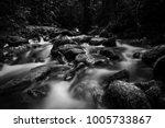 art of black and white image... | Shutterstock . vector #1005733867