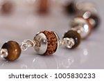 seeds of the sacred rudraksha ...   Shutterstock . vector #1005830233
