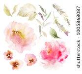 a set of watercolor elements... | Shutterstock . vector #1005868087
