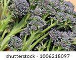 freshly picked bunch of purple... | Shutterstock . vector #1006218097