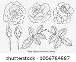 rose vector set by hand drawing.... | Shutterstock .eps vector #1006784887