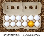 business idea  golden egg in... | Shutterstock . vector #1006818937
