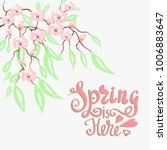 spring is here. vector... | Shutterstock .eps vector #1006883647