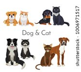 dog and cat promotional poster... | Shutterstock .eps vector #1006971517