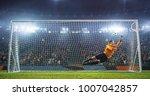 soccer goalkeeper in action on... | Shutterstock . vector #1007042857