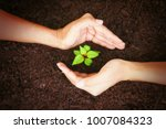 hand protect new leaf on the... | Shutterstock . vector #1007084323