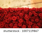 flower wall  natural red roses... | Shutterstock . vector #1007119867