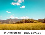 field of golden grass and... | Shutterstock . vector #1007139193