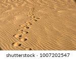 gold desert in sunset.   Shutterstock . vector #1007202547