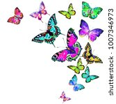 beautiful color butterflies ... | Shutterstock . vector #1007346973