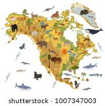 north america flora and fauna... | Shutterstock .eps vector #1007347003