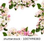 frame of flowers apple tree on...   Shutterstock . vector #1007498383