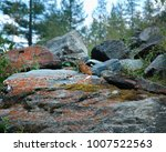 Small photo of Alpine pika mouse hiding on a heap of stones in high mountains in Altai