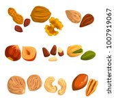 flat vector icons of nuts and... | Shutterstock .eps vector #1007919067