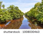 the river  swale flowing... | Shutterstock . vector #1008030463