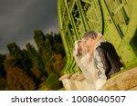 happy bride and groom   Shutterstock . vector #1008040507