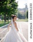 beautiful bride in amazing...   Shutterstock . vector #1008041233