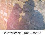 shade silhouette of beautiful...   Shutterstock . vector #1008055987
