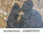 shade silhouette of beautiful...   Shutterstock . vector #1008055993