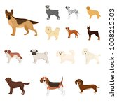 dog breeds cartoon icons in set ... | Shutterstock .eps vector #1008215503