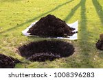 planting hole and a soil heap... | Shutterstock . vector #1008396283