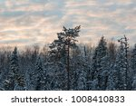 in the winter forest in the... | Shutterstock . vector #1008410833