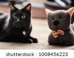 cat with a teddy bear. fluffy... | Shutterstock . vector #1008456223