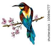 vector illustration european...   Shutterstock .eps vector #100846777