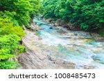 rafting of fresh green | Shutterstock . vector #1008485473