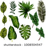 set of tropical leaves. vector.  | Shutterstock .eps vector #1008504547