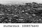 stones on the beach on the... | Shutterstock . vector #1008576643