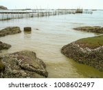 Small photo of Fishing area at a seashore and rocks with Acorn Barnacle attached to the surface.
