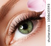 beautiful macro shot of female...   Shutterstock . vector #1008635593