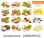 set seeds sunflower  pumpkin ... | Shutterstock .eps vector #1008649213