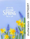 Small photo of Beautiful Spring banner with fresh dafodil and muscari flowers against light blue wooden background. With HELLO SPRING message