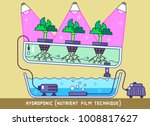 plants growing with hydroponic... | Shutterstock .eps vector #1008817627