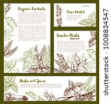 herbs and spices seasonings... | Shutterstock .eps vector #1008834547