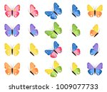 colorful butterflies isolated... | Shutterstock . vector #1009077733