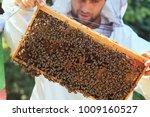 beekeeper collecting honey... | Shutterstock . vector #1009160527