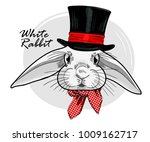 vector white rabbit with black... | Shutterstock .eps vector #1009162717