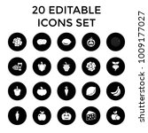 vegetarian icons. set of 20... | Shutterstock .eps vector #1009177027