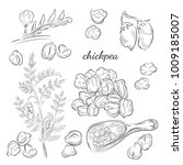 chickpea plant hand drawn... | Shutterstock .eps vector #1009185007