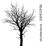 Silhouette of dead tree without leaves - stock vector