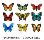 Stock vector colorful butterflies set vector illustration 1009254367